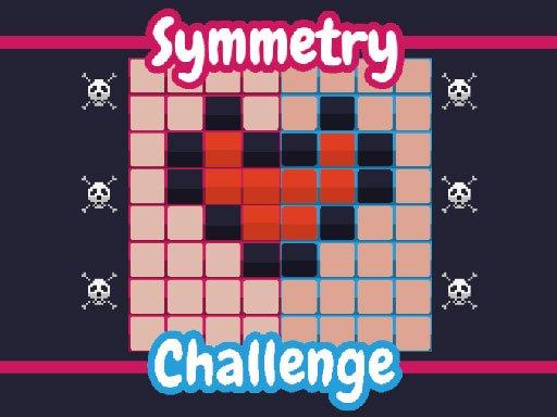 Symmetry Challenge